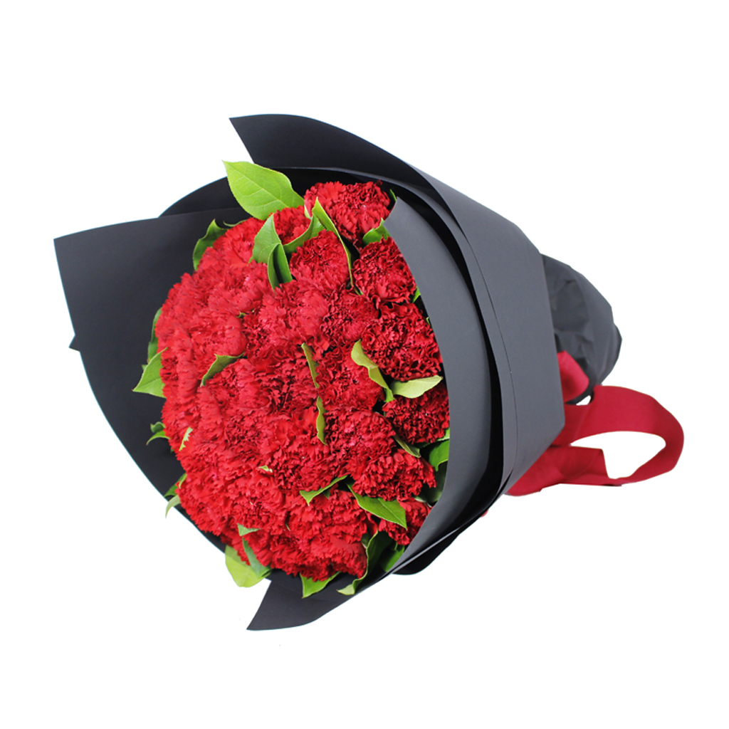 Red Carnation Flower Bouquet 26 Lala Gifts Hampers Specialist